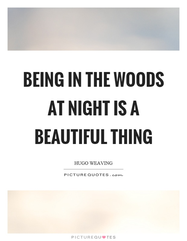 Being in the woods at night is a beautiful thing Picture Quote #1