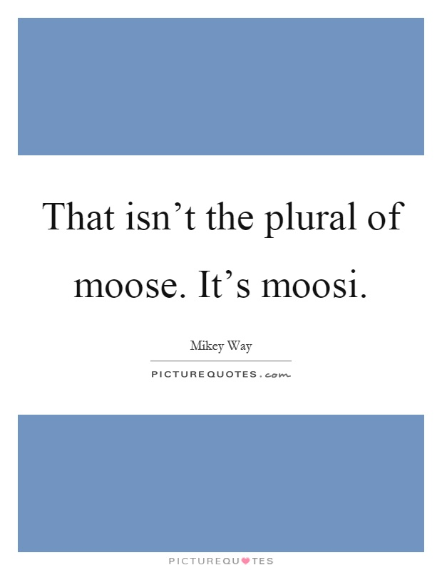 That isn't the plural of moose. It's moosi Picture Quote #1