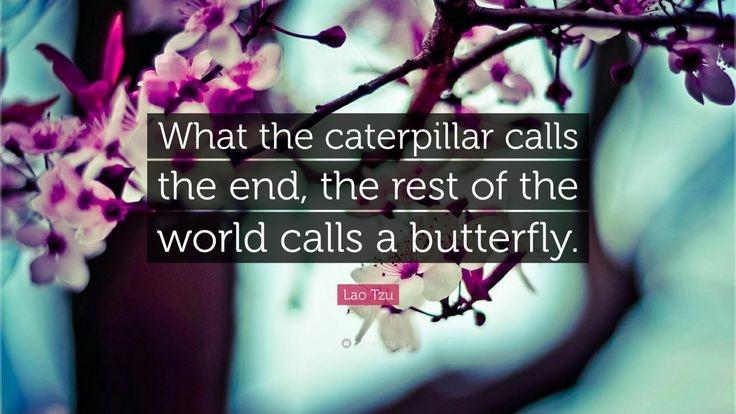 What the caterpillar calls the end, the rest of the world calls a butterfly Picture Quote #1