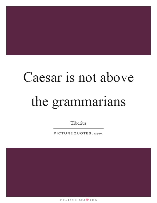 Caesar is not above the grammarians Picture Quote #1