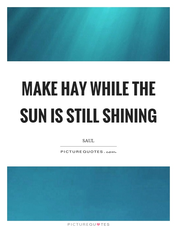 Make hay while the sun is still shining Picture Quote #1