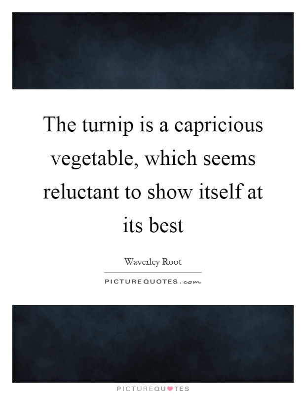 The turnip is a capricious vegetable, which seems reluctant to show itself at its best Picture Quote #1