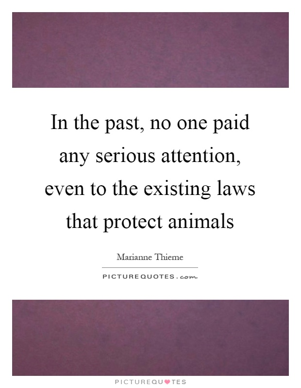In the past, no one paid any serious attention, even to the existing laws that protect animals Picture Quote #1