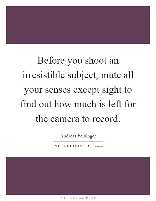 Before you shoot an irresistible subject, mute all your senses except sight to find out how much is left for the camera to record Picture Quote #1