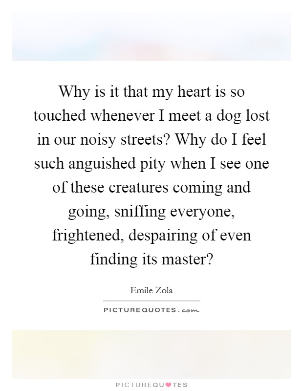 Why is it that my heart is so touched whenever I meet a dog lost in our noisy streets? Why do I feel such anguished pity when I see one of these creatures coming and going, sniffing everyone, frightened, despairing of even finding its master? Picture Quote #1