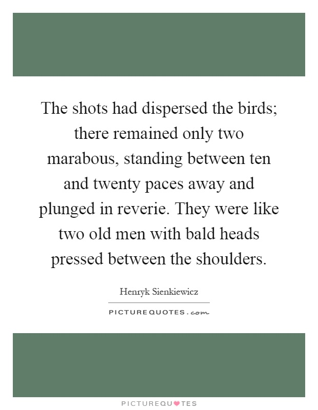 The shots had dispersed the birds; there remained only two marabous, standing between ten and twenty paces away and plunged in reverie. They were like two old men with bald heads pressed between the shoulders Picture Quote #1