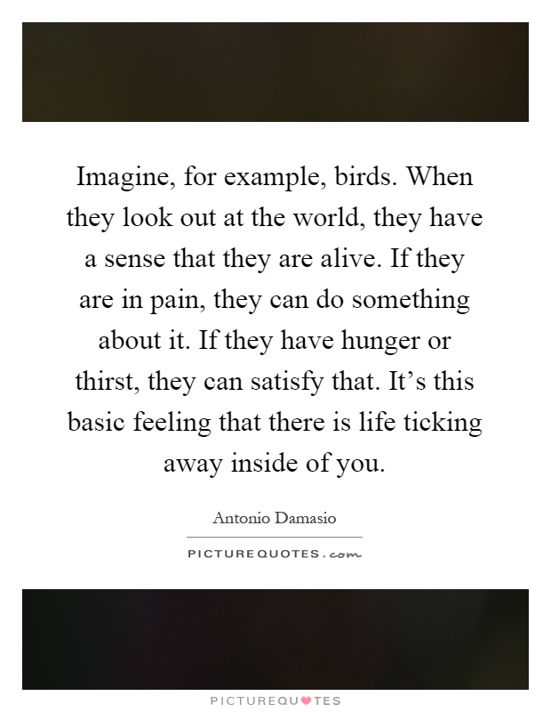 Imagine, for example, birds. When they look out at the world, they have a sense that they are alive. If they are in pain, they can do something about it. If they have hunger or thirst, they can satisfy that. It's this basic feeling that there is life ticking away inside of you Picture Quote #1