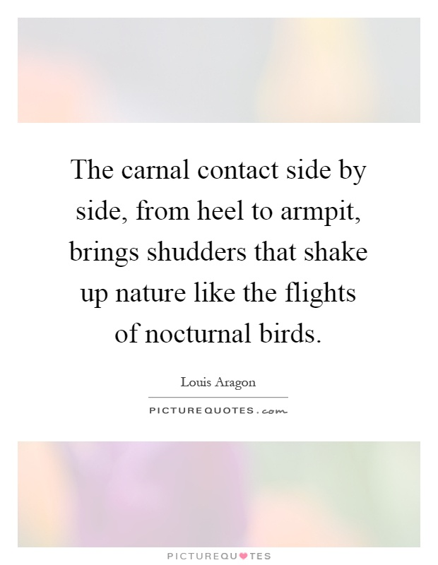 The carnal contact side by side, from heel to armpit, brings shudders that shake up nature like the flights of nocturnal birds Picture Quote #1