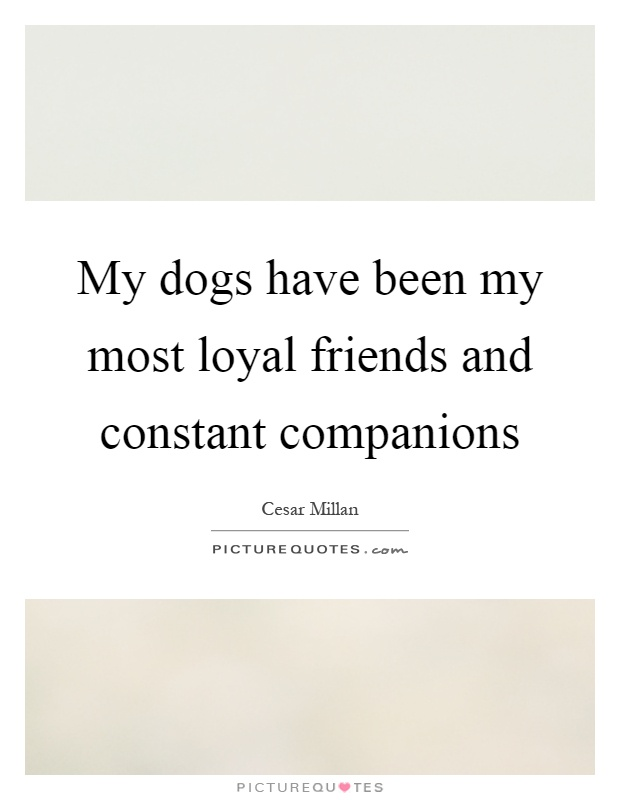 My dogs have been my most loyal friends and constant companions Picture Quote #1