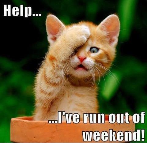 Help... I've run out of weekend! Picture Quote #1