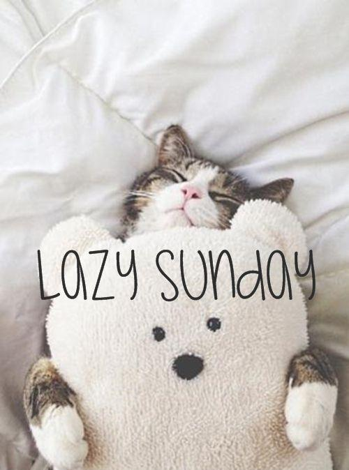 Lazy sunday Picture Quote #1