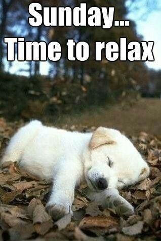 Sunday.. time to relax Picture Quote #1