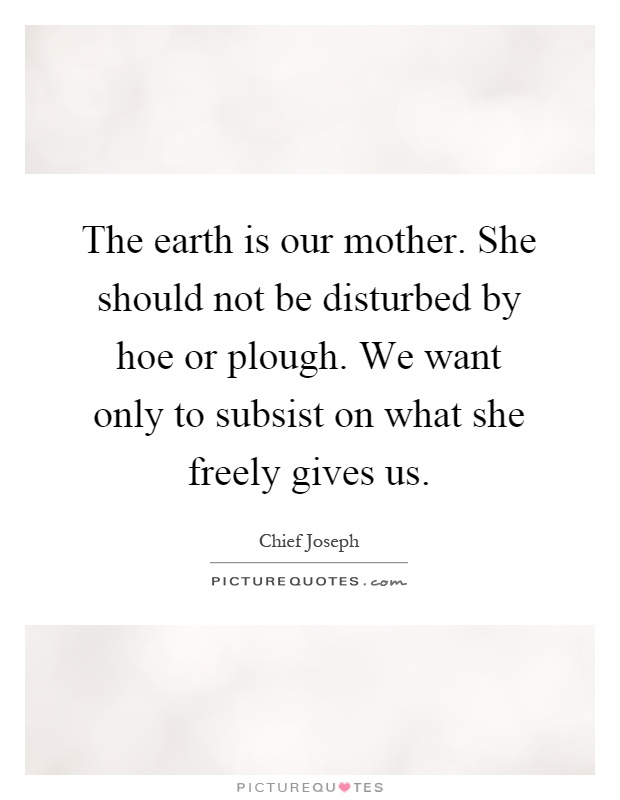 The earth is our mother. She should not be disturbed by hoe or plough. We want only to subsist on what she freely gives us Picture Quote #1