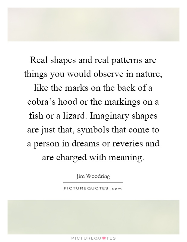 Real shapes and real patterns are things you would observe in nature, like the marks on the back of a cobra's hood or the markings on a fish or a lizard. Imaginary shapes are just that, symbols that come to a person in dreams or reveries and are charged with meaning Picture Quote #1