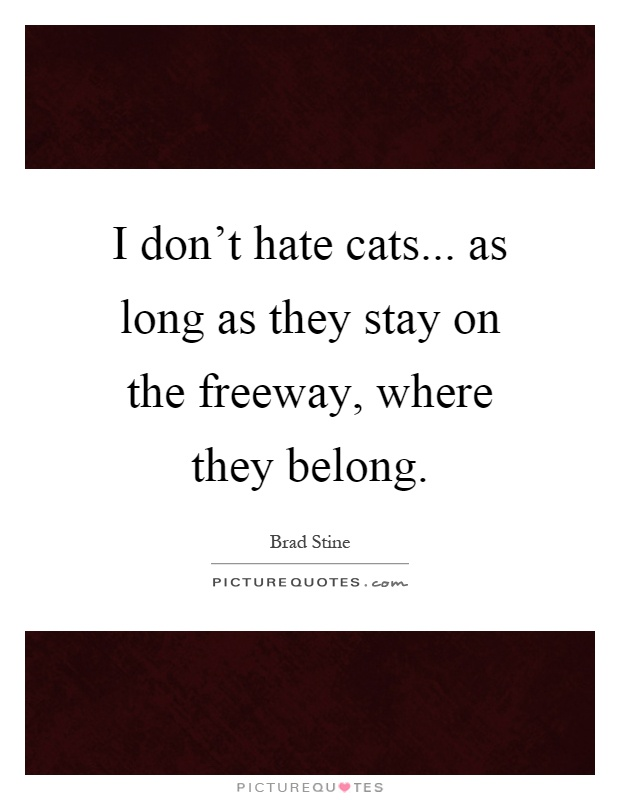 I don\'t hate cats... as long as they stay on the freeway ...