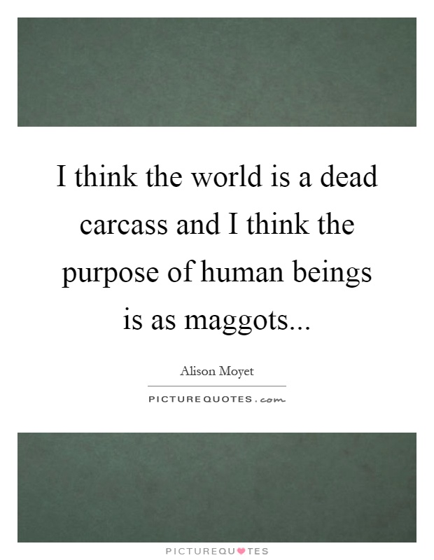I think the world is a dead carcass and I think the purpose of human beings is as maggots Picture Quote #1