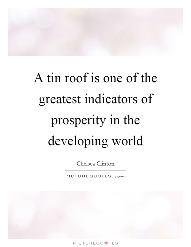A tin roof is one of the greatest indicators of prosperity in the developing world Picture Quote #1