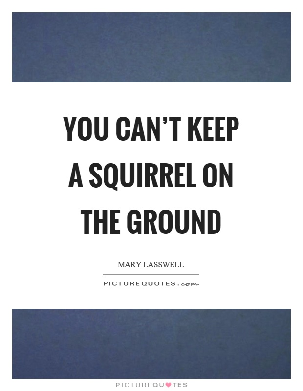 You can't keep a squirrel on the ground Picture Quote #1