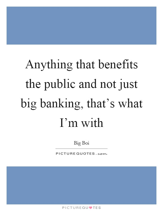 Anything that benefits the public and not just big banking, that's what I'm with Picture Quote #1