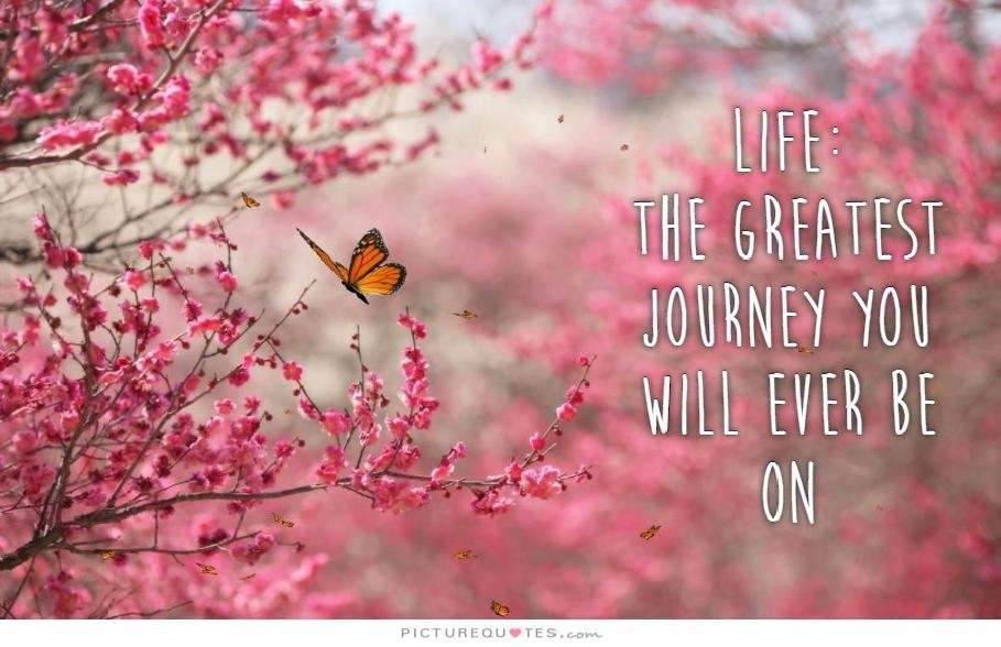 Life: The greatest journey you will ever be on Picture Quote #1