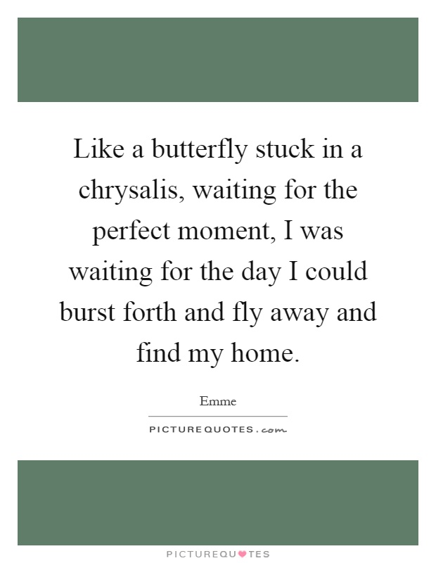 Like a butterfly stuck in a chrysalis, waiting for the perfect moment, I was waiting for the day I could burst forth and fly away and find my home Picture Quote #1