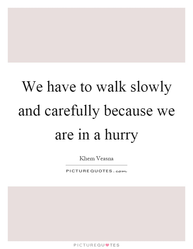 We have to walk slowly and carefully because we are in a hurry Picture Quote #1