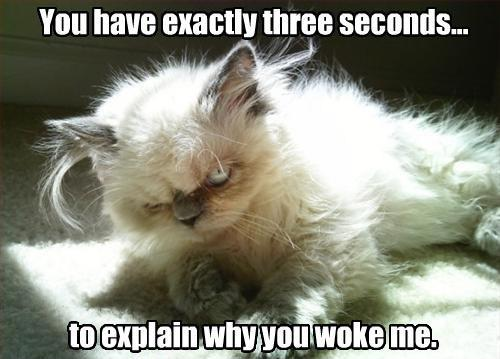 You have exactly three seconds to explain why you woke me Picture Quote #1