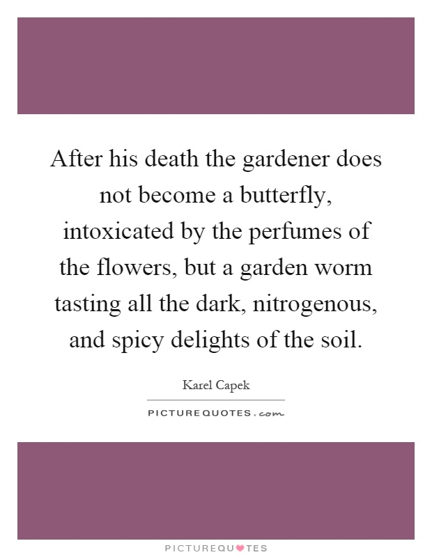 After his death the gardener does not become a butterfly, intoxicated by the perfumes of the flowers, but a garden worm tasting all the dark, nitrogenous, and spicy delights of the soil Picture Quote #1