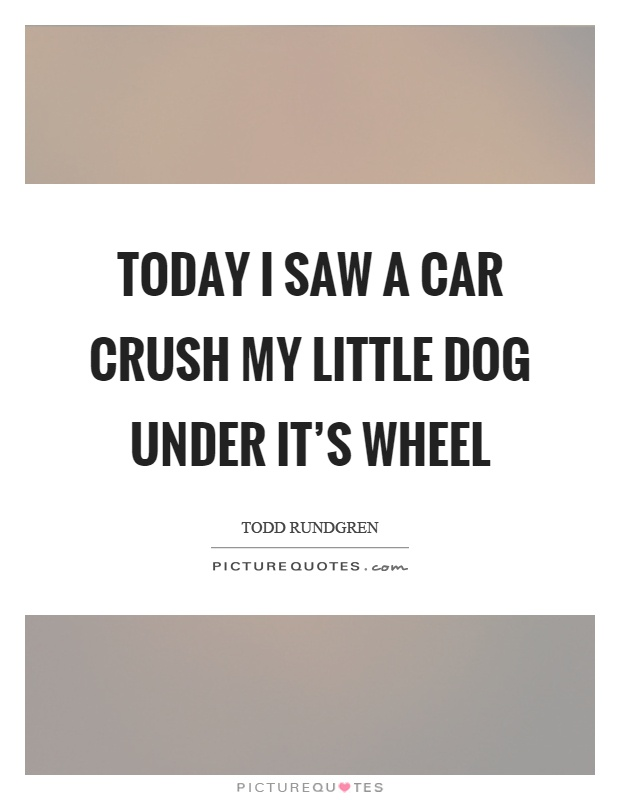 Today I saw a car crush my little dog under it's wheel Picture Quote #1