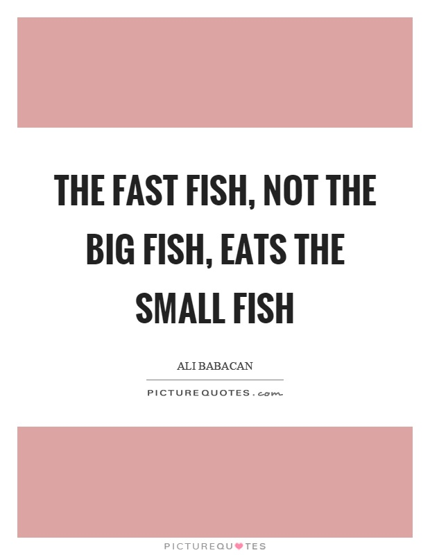 The fast fish, not the big fish, eats the small fish Picture Quote #1