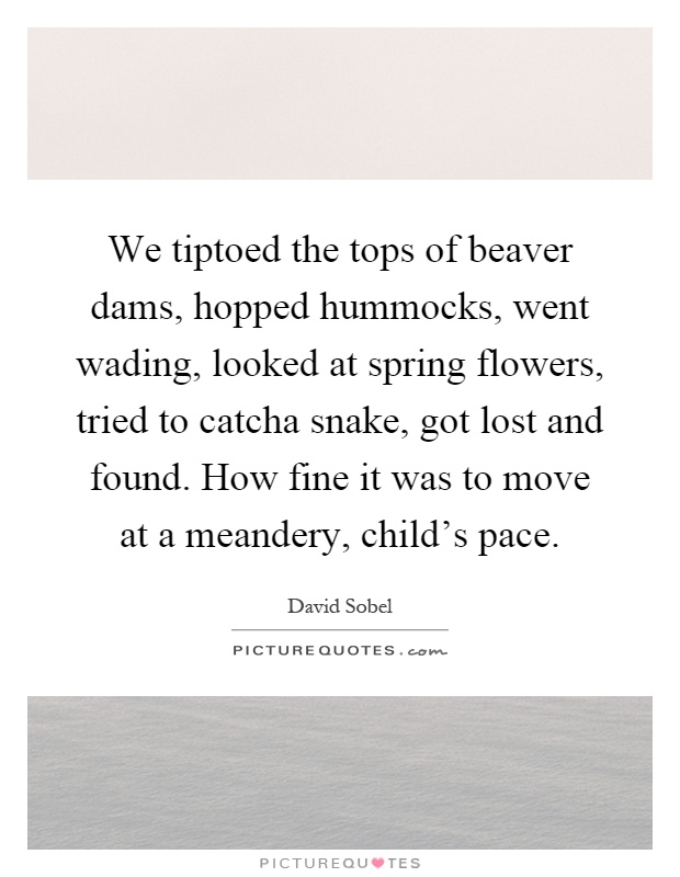 We tiptoed the tops of beaver dams, hopped hummocks, went wading, looked at spring flowers, tried to catcha snake, got lost and found. How fine it was to move at a meandery, child's pace Picture Quote #1