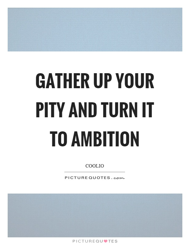 Gather up your pity and turn it to ambition Picture Quote #1