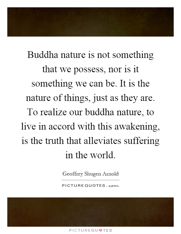 Buddha nature is not something that we possess, nor is it something we can be. It is the nature of things, just as they are. To realize our buddha nature, to live in accord with this awakening, is the truth that alleviates suffering in the world Picture Quote #1