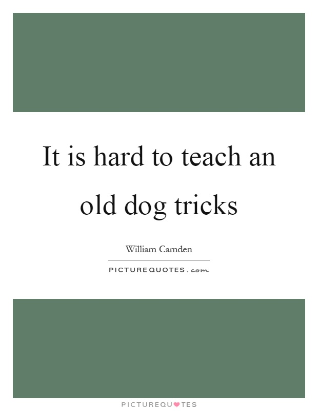 It is hard to teach an old dog tricks | Picture Quotes