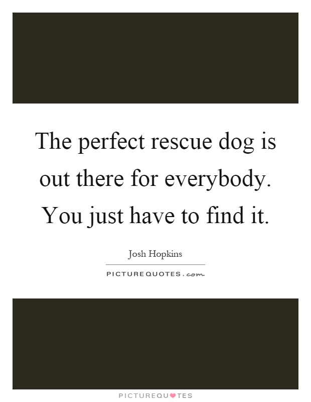 The perfect rescue dog is out there for everybody. You just have to find it Picture Quote #1