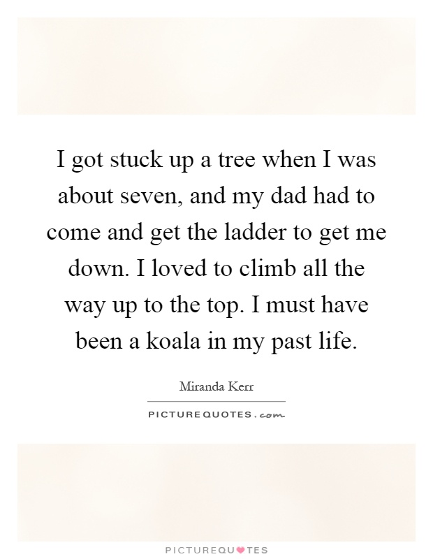 I got stuck up a tree when I was about seven, and my dad had to come and get the ladder to get me down. I loved to climb all the way up to the top. I must have been a koala in my past life Picture Quote #1