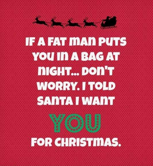 If a fat man puts you in a bag at night... don't worry. I told Santa I want YOU for Christmas Picture Quote #1