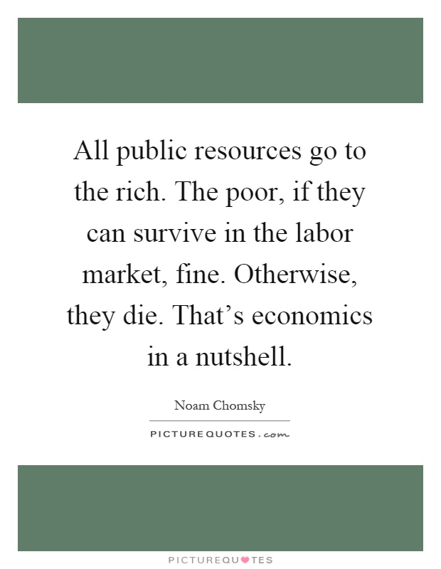 All public resources go to the rich. The poor, if they can survive in the labor market, fine. Otherwise, they die. That's economics in a nutshell Picture Quote #1