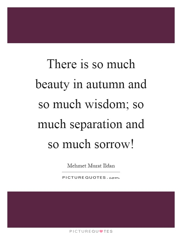 There is so much beauty in autumn and so much wisdom; so much separation and so much sorrow! Picture Quote #1