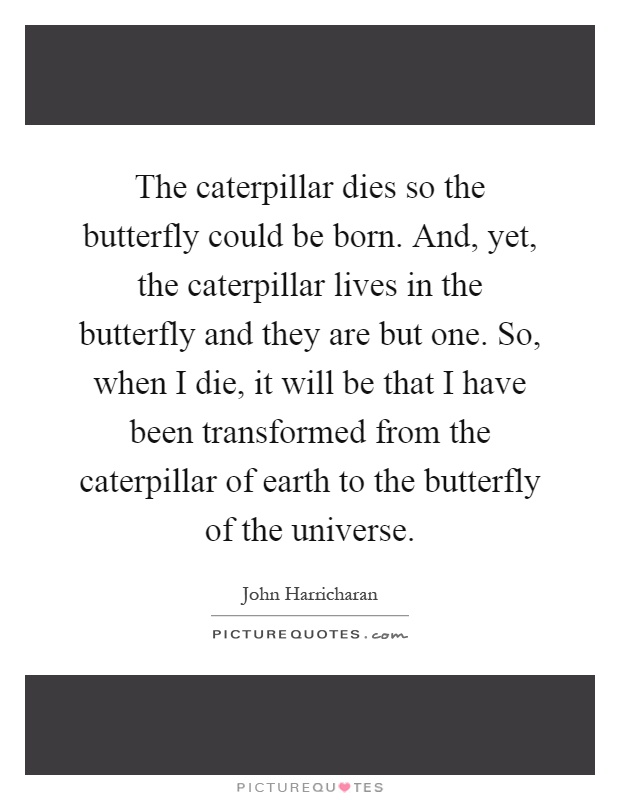 The caterpillar dies so the butterfly could be born. And, yet, the caterpillar lives in the butterfly and they are but one. So, when I die, it will be that I have been transformed from the caterpillar of earth to the butterfly of the universe Picture Quote #1