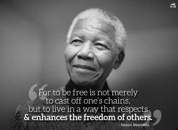 For to be free is not merely to cast off one's chains, but to live in a way that respects and enhances the freedom of others Picture Quote #1