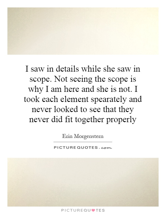 I saw in details while she saw in scope. Not seeing the scope is why I am here and she is not. I took each element spearately and never looked to see that they never did fit together properly Picture Quote #1