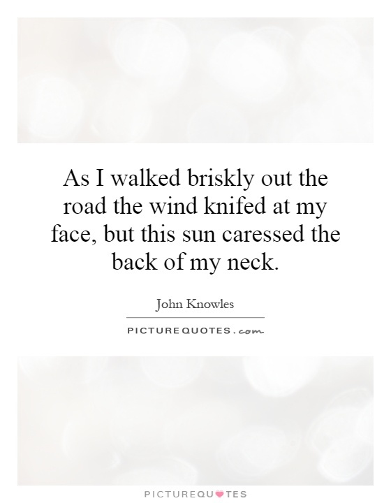 As I walked briskly out the road the wind knifed at my face, but this sun caressed the back of my neck Picture Quote #1