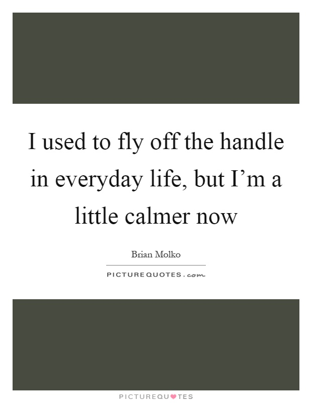 I used to fly off the handle in everyday life, but I'm a little calmer now Picture Quote #1