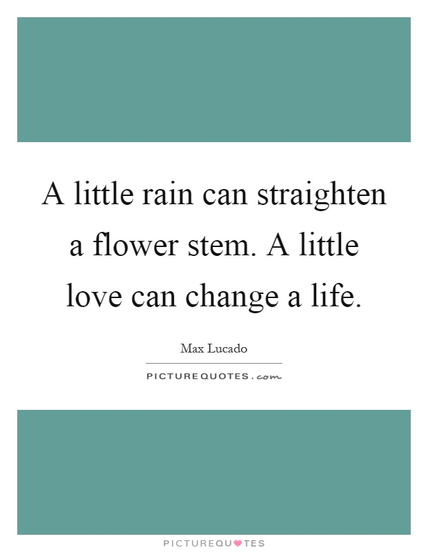 A little rain can straighten a flower stem. A little love can change a life Picture Quote #1