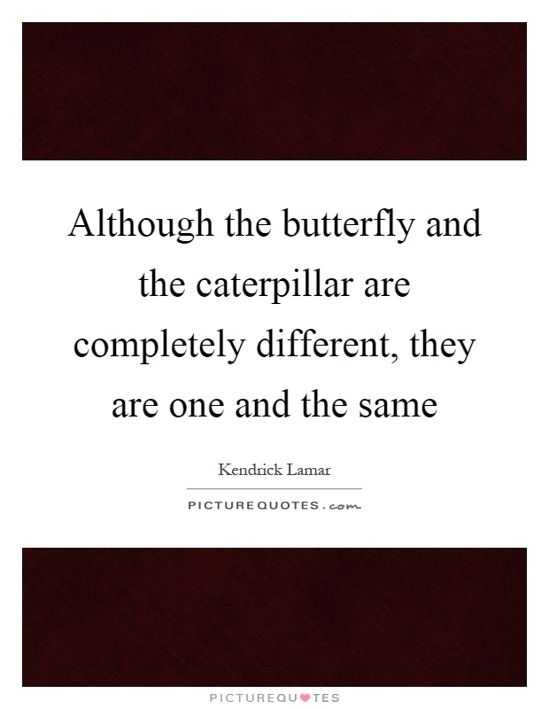 Although the butterfly and the caterpillar are completely different, they are one and the same Picture Quote #1