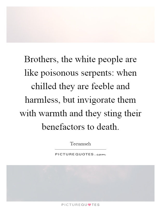 Brothers, the white people are like poisonous serpents: when chilled they are feeble and harmless, but invigorate them with warmth and they sting their benefactors to death Picture Quote #1