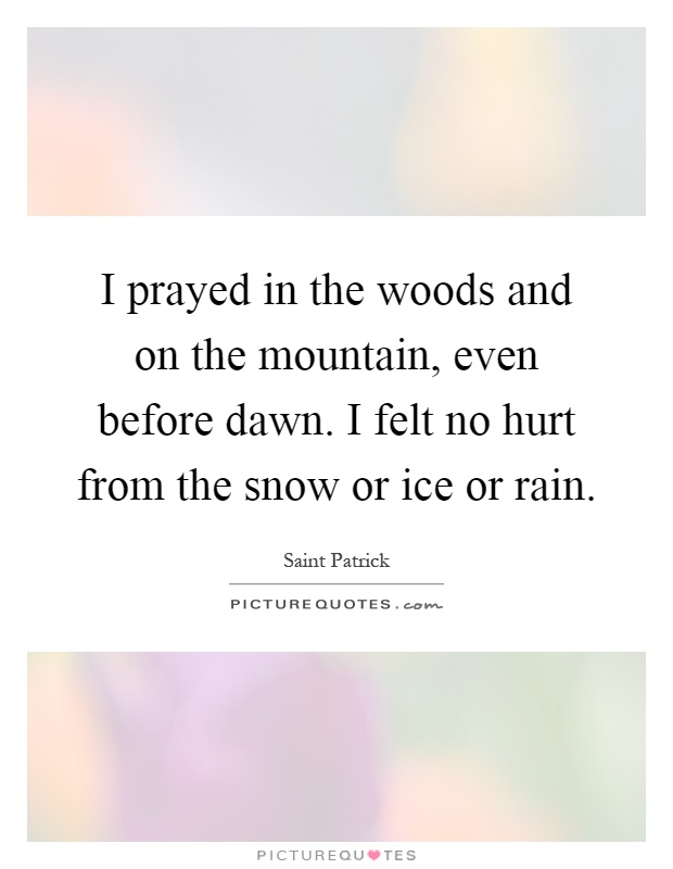 I prayed in the woods and on the mountain, even before dawn. I felt no hurt from the snow or ice or rain Picture Quote #1