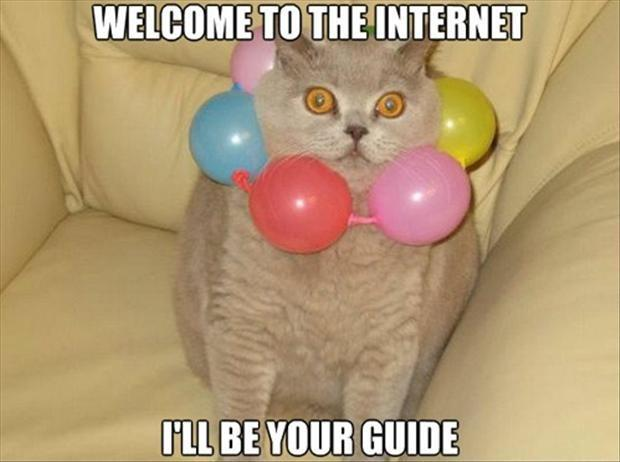 Welcome to the internet. I'll be your guide Picture Quote #1