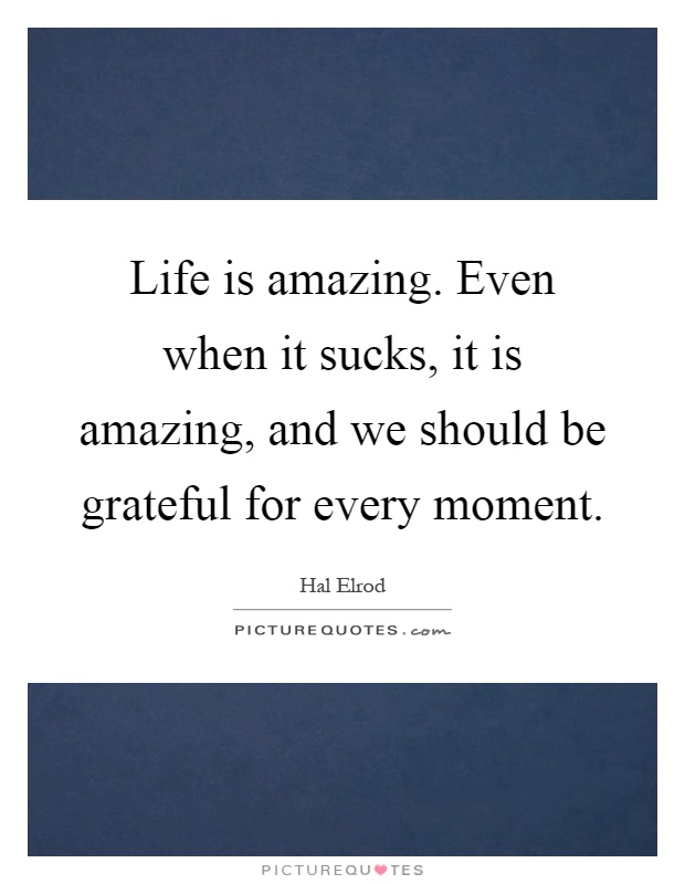 Life is amazing. Even when it sucks, it is amazing, and we should be grateful for every moment Picture Quote #1